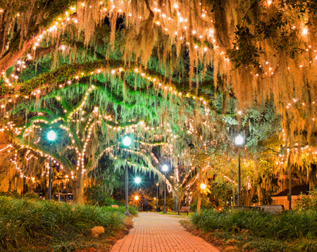 """Florida town center plaza with lit trees"