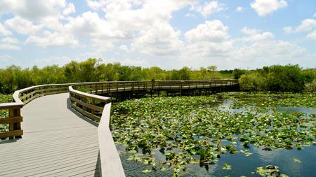 """""""Pasarela peatonal del puente en el parque de Florida"""