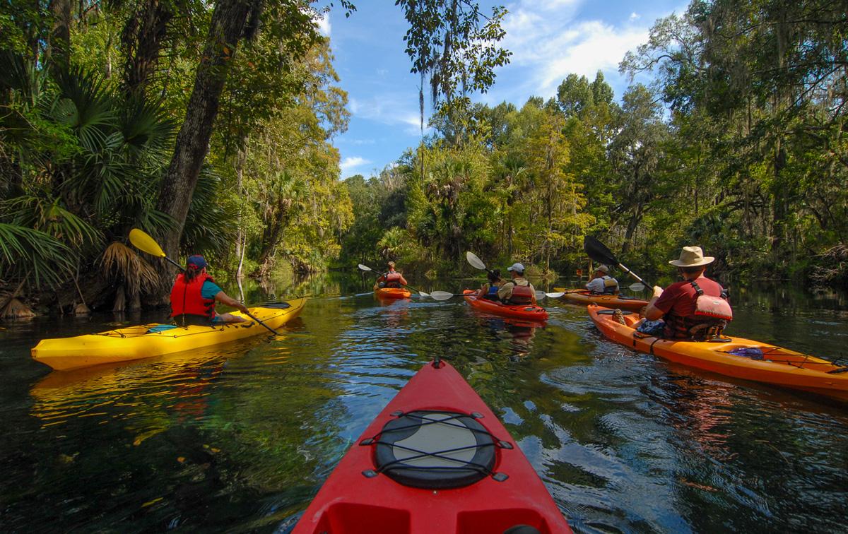 Practicar kayak en Florida
