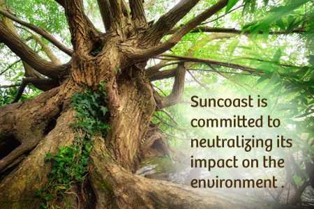 Suncoast Credit Union is committed to neutralizing its impact on the environment.