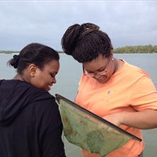 students study samples in ocean water