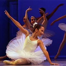 ballet classes in pinellas county schools
