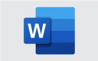 MS Word Workshop