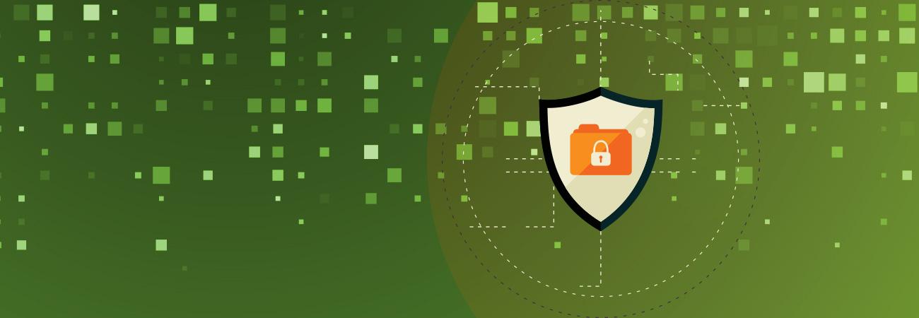 protección en línea